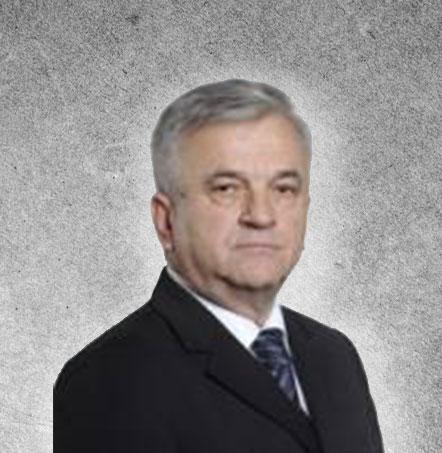 Недељко Чубриловић